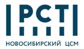 Logo_Novosib_391e690e